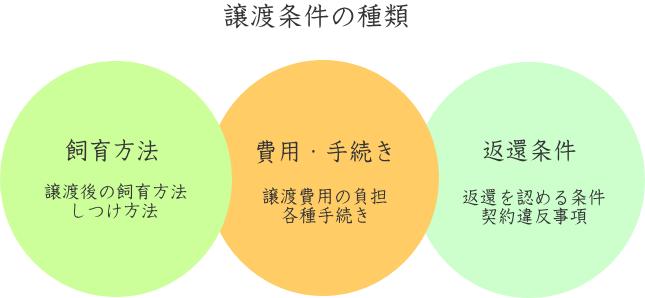 譲渡条件の種類