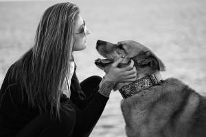 愛犬に財産分与をするペット信託