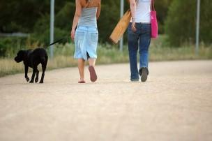 散歩代行・シッターにお願いした時の散歩トラブルの法的責任