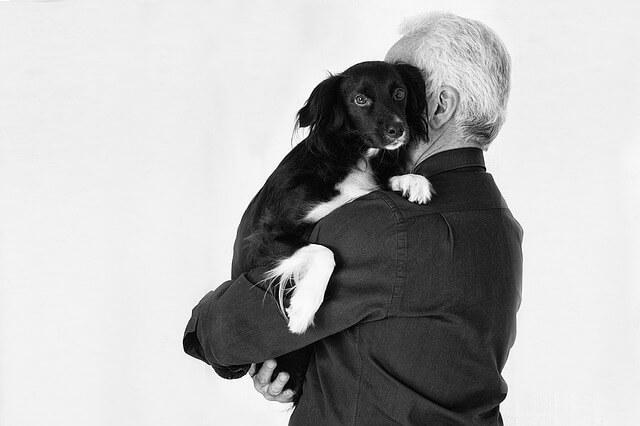 ペットの共同飼育