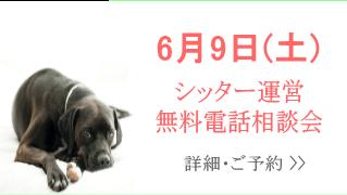 シッター運営相談会